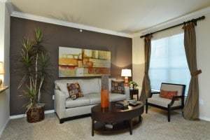 One Bedroom Apartment Rental in San Antonio, TX