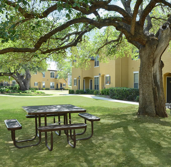 Apartments In San Antonio Tx: The Park At Braun Station Apartments For Rent In San