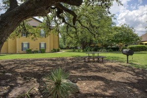 Two Bedroom Apartments for rent in San Antonio, TX - Outdoor Grilling Area (2)