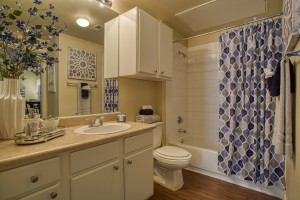 One Bedroom Apartments for rent in San Antonio, TX - Model Bathroom