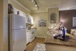 One Bedroom Apartments for rent in San Antonio, TX - Model Kitchen (2)