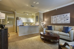 One Bedroom Apartments for rent in San Antonio, TX - Model Living Room & Kitchen
